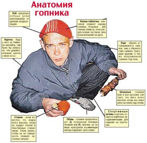http://kavicom.ru/uploads/sub/05d33f3b_Anatomij_gopnika.jpg