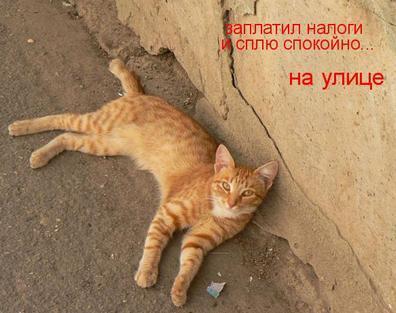 http://kavicom.ru/uploads/sub/219db82c_nalog.jpg