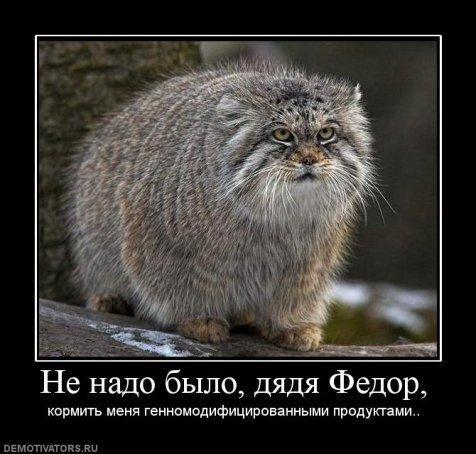 http://kavicom.ru/uploads/sub/422c4f5f_f503b0a47e2a.jpg