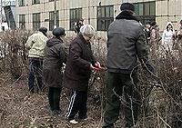 http://kavicom.ru/uploads/sub/6f6ca9a5_030609_rabota.jpg