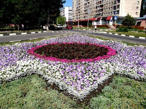 http://kavicom.ru/uploads/sub/71b91e62_P7030018.JPG
