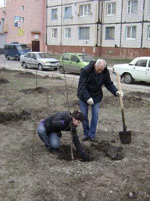 http://kavicom.ru/uploads/sub/88d848b6_5.jpg