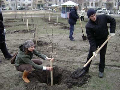 http://kavicom.ru/uploads/sub/ab6b5fbb_8.jpg