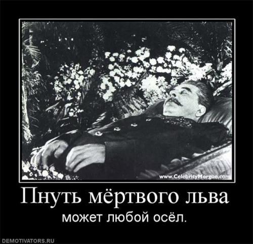 http://kavicom.ru/uploads/sub/acbaaa56_Pnuty_lyva....jpg