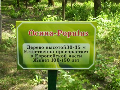 http://kavicom.ru/uploads/sub/c10f5a06_2.JPG