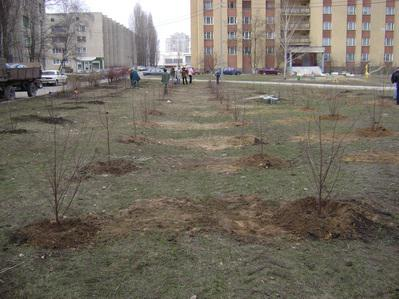 http://kavicom.ru/uploads/sub/cf7db660_16.jpg
