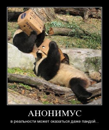 http://kavicom.ru/uploads/sub/e5b92f97_hvsb8v7bdvff.jpg