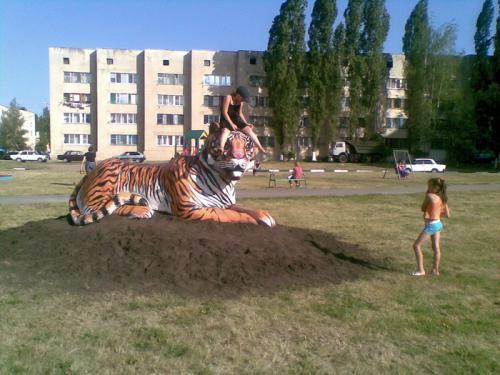 http://kavicom.ru/uploads/sub/ee12880c_tigr2.jpg